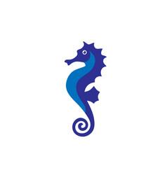 sea horse creative vector image