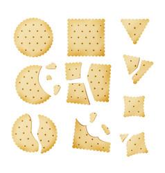 Bitten chip biscuit cookie cracker in vector