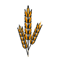 wheat ears icon image vector image vector image