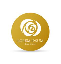golden rose curve logo design template vector image vector image