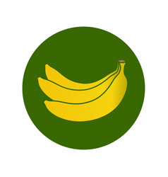 Bananas icon vector
