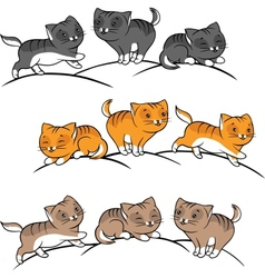 Collection of cute funny cats set vector