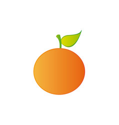 Colorful realistic orange fruit food vector