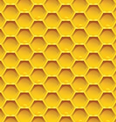 honeycomb colorful seamless pattern honeycombs vector image