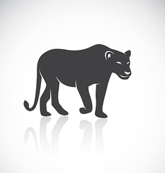 Image of an female lion vector