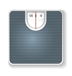 Weight Scale on white background vector image