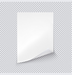 white sheet paper on transparent background vector image