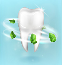 Whitening tooth ads with mint leaves on blue vector