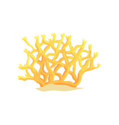 Yellow tropical underwater plant bright coral on vector