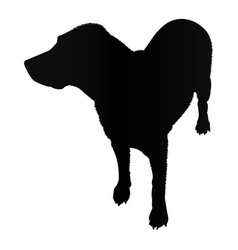 labrador dog silhouette isolated on white vector image
