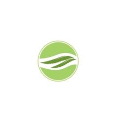 Aloe Vera label vector image