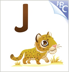 Animal alphabet for kids j for jaguar vector