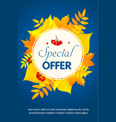 autumn special offer concept background flat vector image