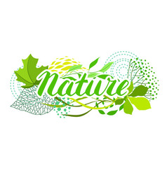 background of stylized green leaves vector image