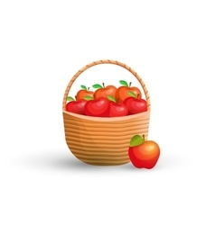 Basket with red apples vector image