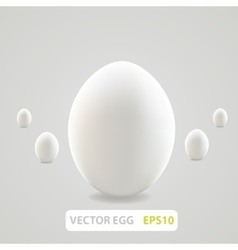 Brown egg concept vector image