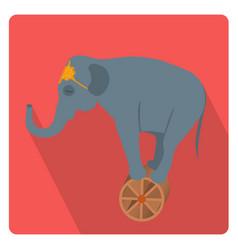 circus elephant on wheel icon flat style vector image