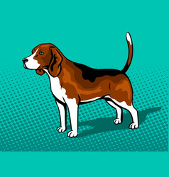 Dog beagle pop art style vector