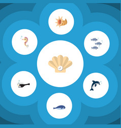 Flat icon nature set of cachalot fish conch and vector