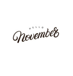 hello november hand written lettering vector image