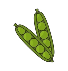 Pea pod vegetable vector