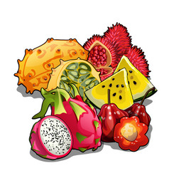 Set of juicy ripe fresh tropical fruits isolated vector
