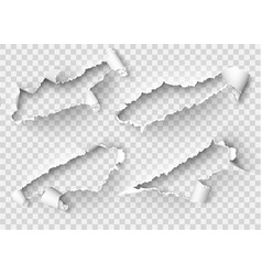torn ripped paper template sides with vector image