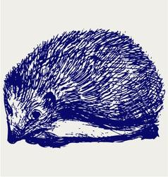Hedgehog animal vector image vector image