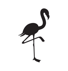 black flamingo silhouette isolated on white vector image