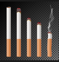 cigarette set realistic cigarette butt vector image