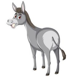Donkey animal cartoon character vector