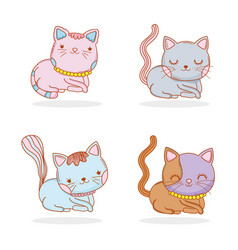 set cute cat animal with whiskers vector image