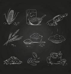 doodle cereals groats and porridge muesli and vector image vector image