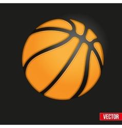 Symbol soft Basketball ball vector image vector image
