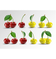 cherry realistic fruit icons set vector image vector image