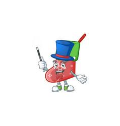 Cartoon character santa socks magician style vector