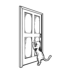 cat near door engraving vector image
