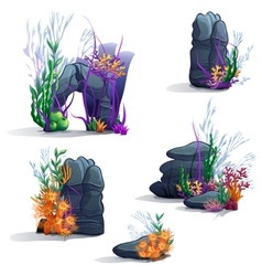 Images of sea stones with algae vector