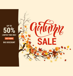 Leaves and branches sale template vector
