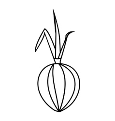 Onion icon outline style vector image