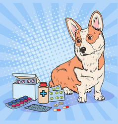 Pop art corgi dog with medication pills vector
