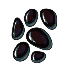 Set of shiny black stones for massage spa salon vector