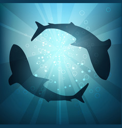 Silhouettes sharks in water vector