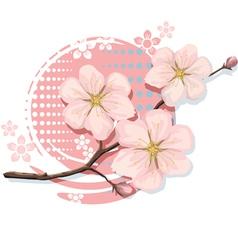 Blossom Sakura Cherry vector image