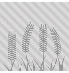 Wheat icon grain design Agriculture concept vector image