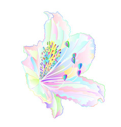 Rhododendron multi colored light flower vector