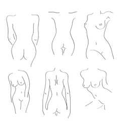silhouettes of naked girls on a white background vector image
