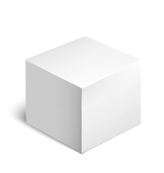 Cardboard Package Box White Package Square vector image vector image