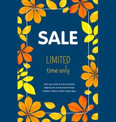 autumn limited sale concept background flat style vector image