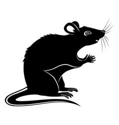black rat sign vector image